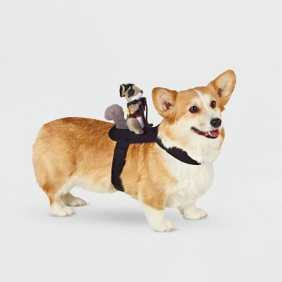 Squirrel Pirate Rider Dog and Cat Costume - Hyde & EEK! Boutique™