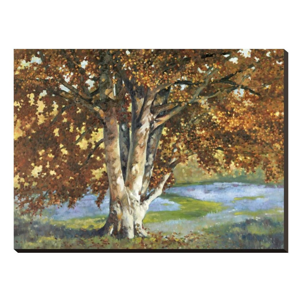 Golden Light II By Graham Reynolds Stretched Canvas Print 33x25 - Art.com, Multicolored