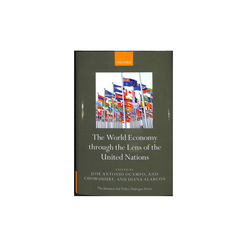 World Economy through the Lens of the United Nations - (Hardcover)
