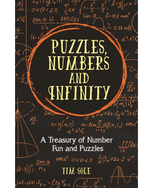Puzzles, Numbers and Infinity : A Treasury of Number Fun and Puzzles -  by Tim Sole (Hardcover) - image 1 of 1