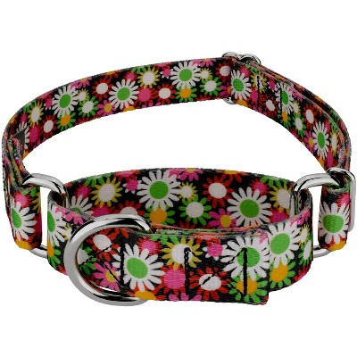 Country Brook Petz® Daisy Fields Martingale Dog Collar
