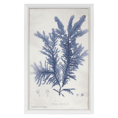 Blue Coral Plant Framed Wall Art - Threshold™