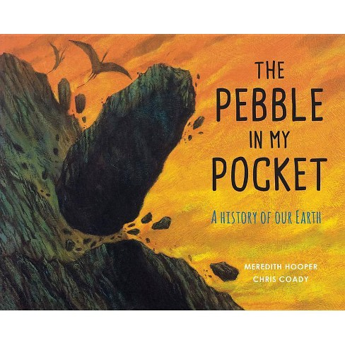 The Pebble in My Pocket - by  Meredith Hooper (Paperback) - image 1 of 1