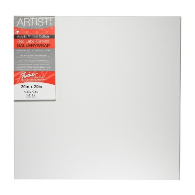 """Fredrix Gallerywrap Stretched Canvas, 20 X 20"""""""