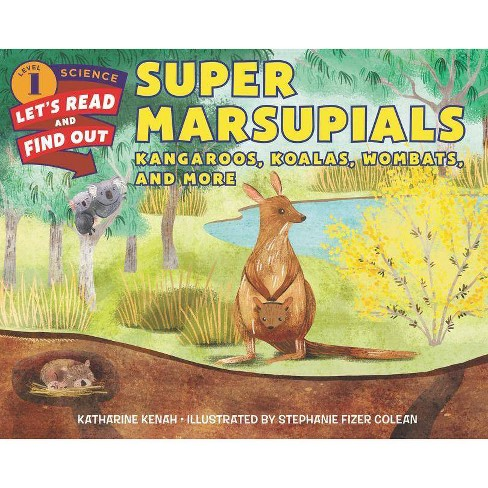 Super Marsupials: Kangaroos, Koalas, Wombats, and More - (Let's-Read-And-Find-Out Science 1) (Paperback) - image 1 of 1