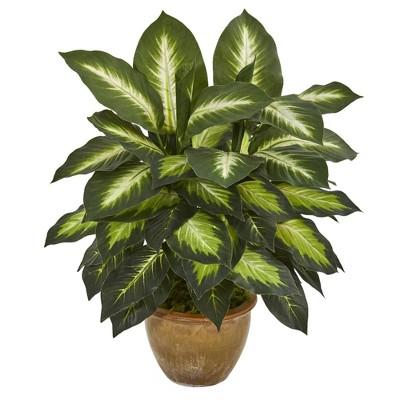 """18"""" x 16"""" Artificial Dieffenbachia Plant in Ceramic Planter - Nearly Natural"""