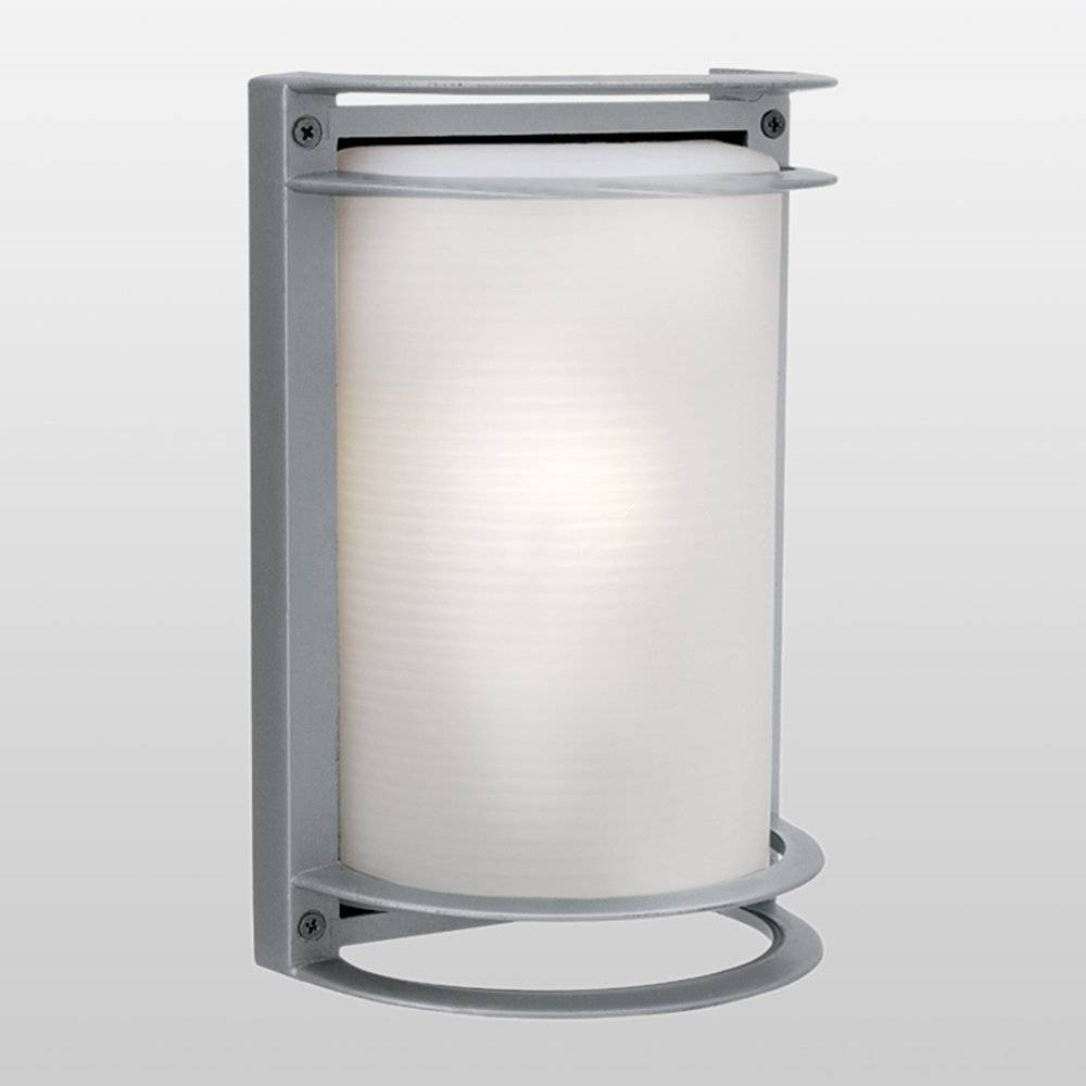 Image of Nevis LED Outdoor Wall Light with Ribbed Frosted Glass Shade Gray - Access Lighting, Satin