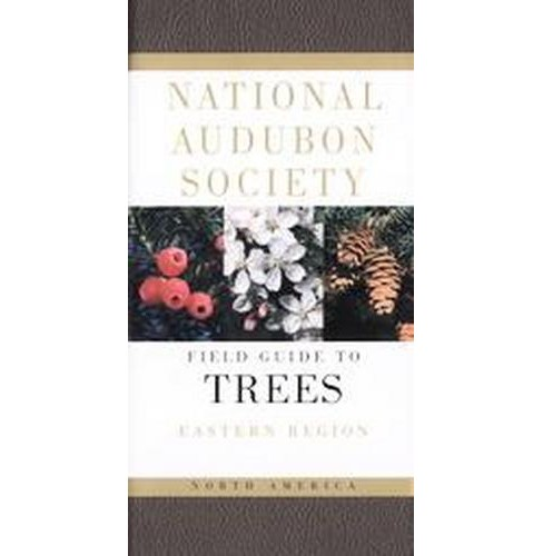 National Audubon Society Field Guide to North American Trees : Eastern Region (Paperback) (Elbert Luther - image 1 of 1