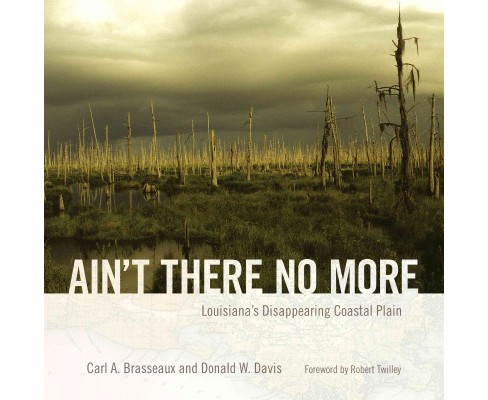 Ain't There No More : Louisiana's Disappearing Coastal Plain (Hardcover) (Carl A. Brasseaux & Donald W. - image 1 of 1