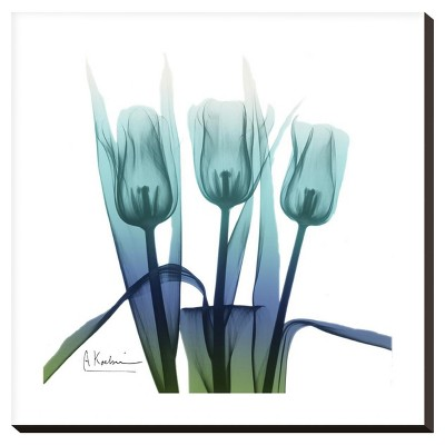 Blue Ombre Tulips By Albert Koetsier Stretched Canvas Print - Art.Com