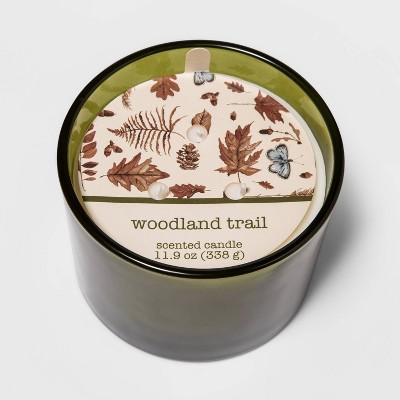 11.9oz Frosted Glass Jar 3-Wick Woodland Trail Candle - Threshold™