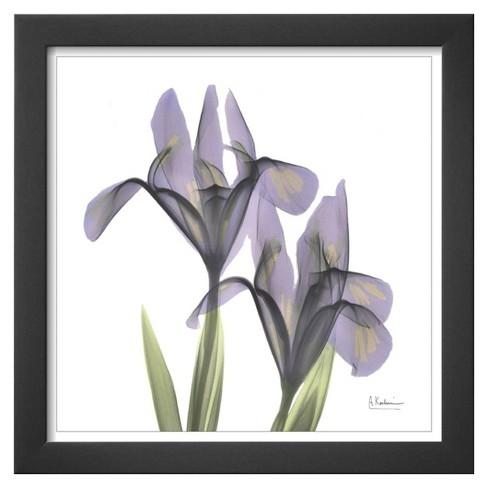 Art A Gift Of Flowers Framed Print Target