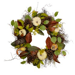 Northlight Pumpkin, Pinecone, and Gourd Grapevine Artificial Thanksgiving Wreath - 24-Inch, Unlit