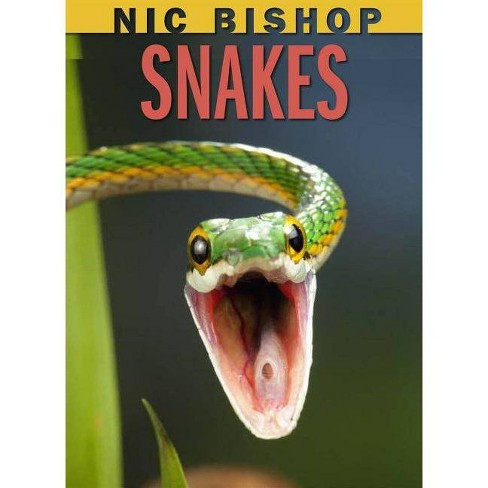 Snakes - (Nic Bishop) by  Nic Bishop (Hardcover) - image 1 of 1
