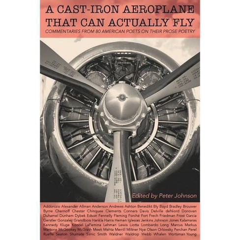 A Cast-Iron Aeroplane That Can Actually Fly - by  Peter Johnson (Paperback) - image 1 of 1