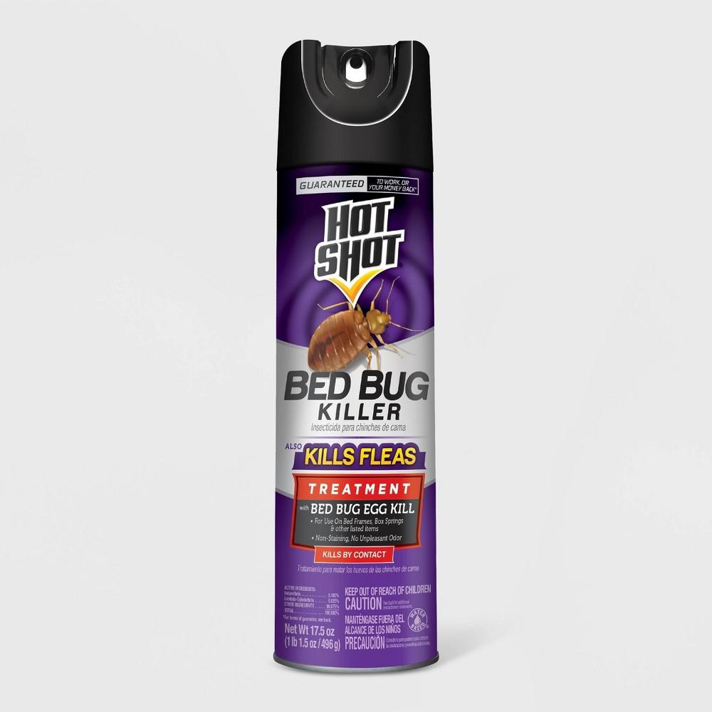 Image of 17.5oz Bed Bug Killer Aerosol - Hot Shot
