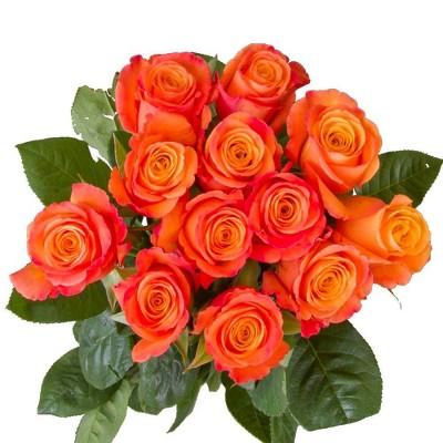 Fresh Cut Orange Roses - 12ct