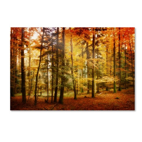 'Brilliant Fall Color' by Philippe Sainte-Laudy Ready to Hang Canvas Wall Art - image 1 of 3