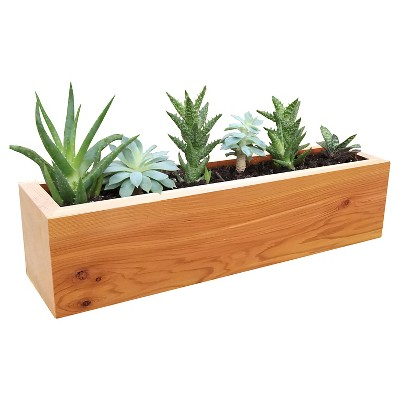 Succulent Planter Rectangular Western Clear Oil Finish - Red Cedar - Gronomics