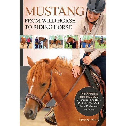 Mustang: From Wild Horse to Riding Horse - by  Vivian Gabor (Paperback) - image 1 of 1