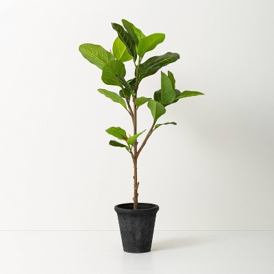 "39"" Faux Audrey Ficus Tree - Hearth & Hand™ with Magnolia"