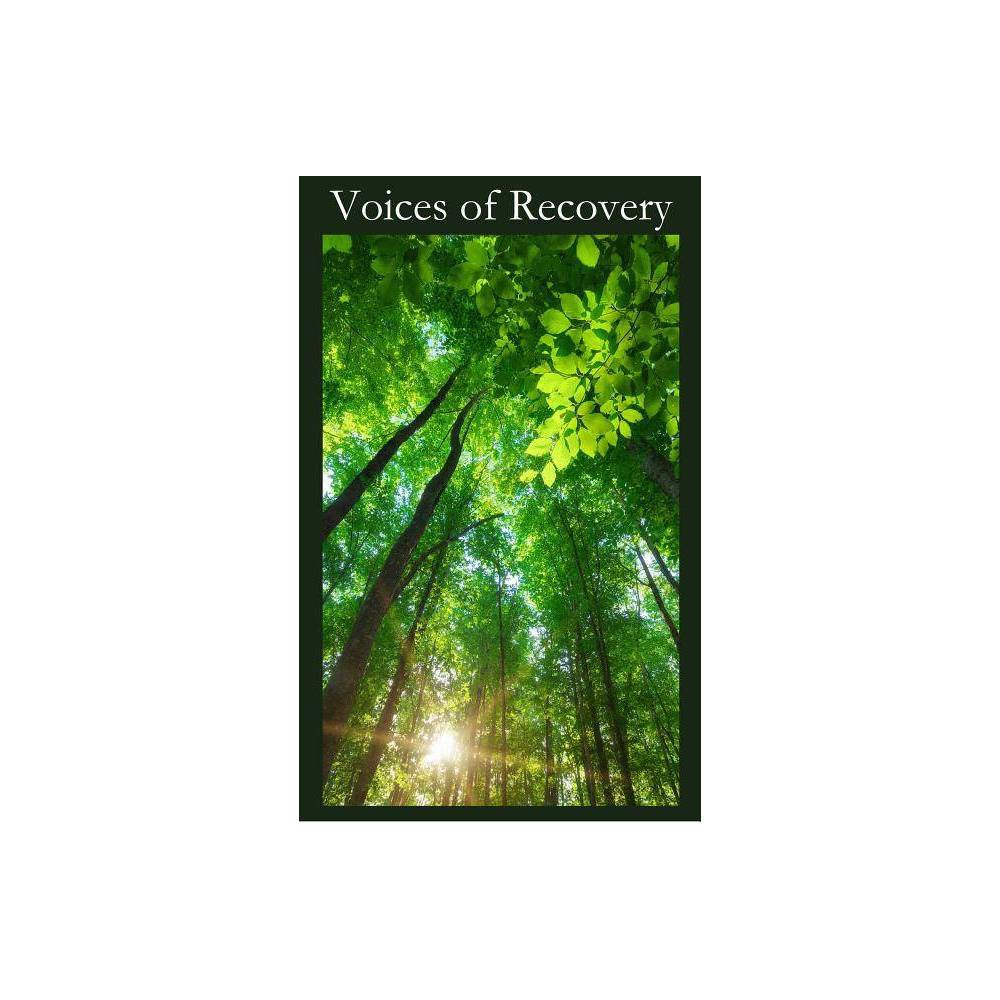 Voices Of Recovery By Saa Fellowship Paperback