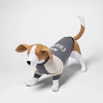 Nap Champ Lightweight Dog Sweatshirt - Boots & Barkley™