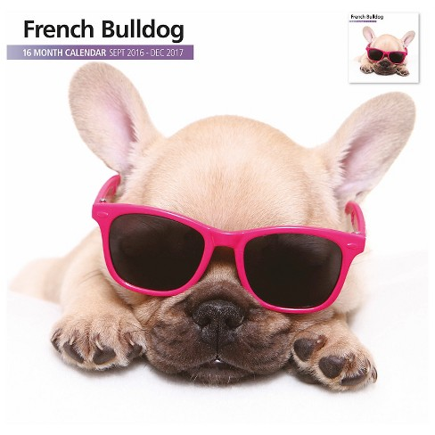 French Bulldog 2017 16 Month Calendar - image 1 of 3
