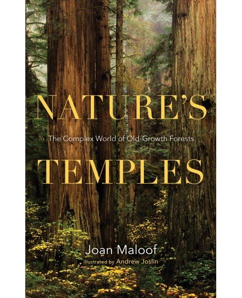 Nature's Temples : The Complex World of Old-Growth Forests (Hardcover) (Joan Maloof) - image 1 of 1