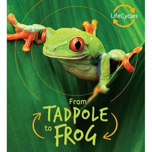From Tadpole to Frog - (Life Cycles) by  Camilla De La Bedoyere (Hardcover) - image 1 of 1