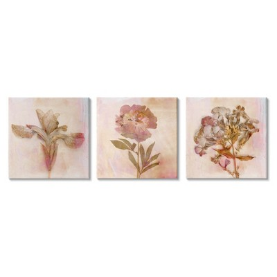 Stupell Industries Vintage Dried Pink Flowers Flattened Florals