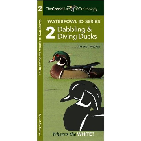 The Cornell Lab of Ornithology Waterfowl Id 2 Dabbling & Diving Ducks -  (Paperback)