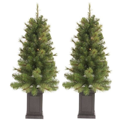 Potted Christmas Tree.2ct 3 5ft Pre Lit Slim Artificial Christmas Tree Potted Douglas Fir Clear Lights Wondershop