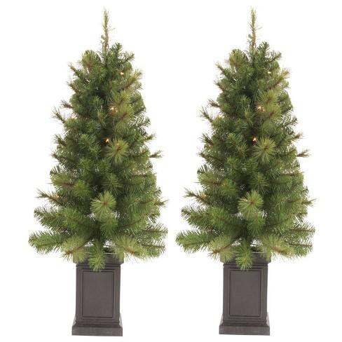 Douglas Fir Christmas Tree.2ct 3 5ft Pre Lit Slim Artificial Christmas Tree Potted Douglas Fir Clear Lights Wondershop