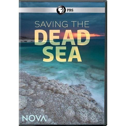 Nova: Saving the Dead Sea (DVD) - image 1 of 1