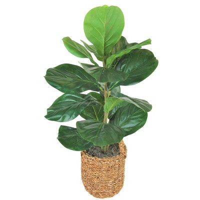 """30"""" x 16"""" Artificial Fig Plant in Basket with Handles Green - LCG Florals"""