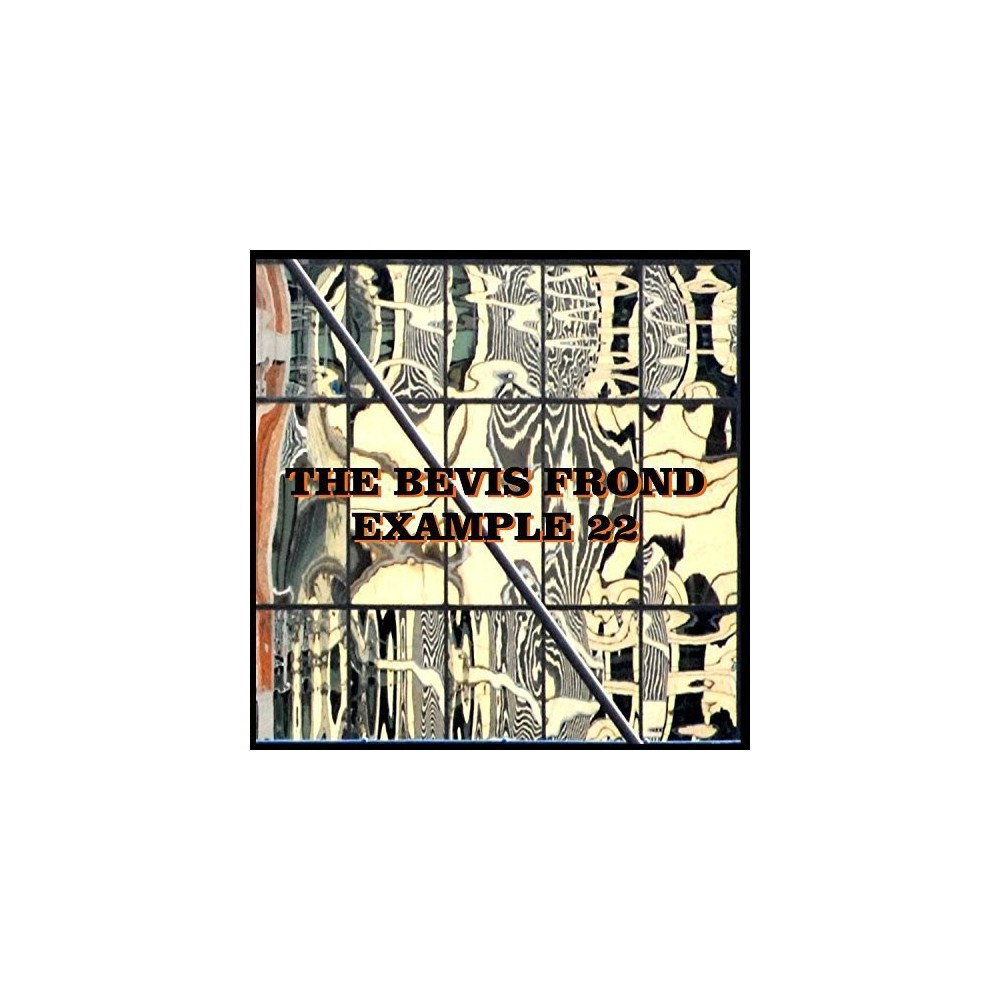 Bevis Frond - Example 22 (Vinyl)