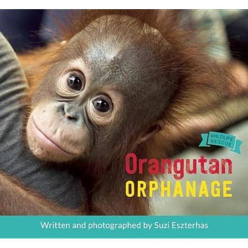 Orangutan Orphanage - (Wildlife Rescue) (Hardcover) - image 1 of 1
