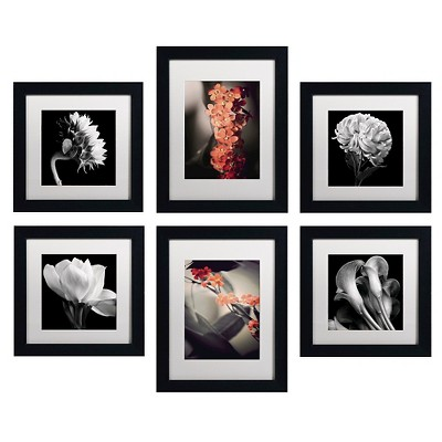 'Floral Gallery Wall Collection Set of 6' Ready to Hang Black Framed Art