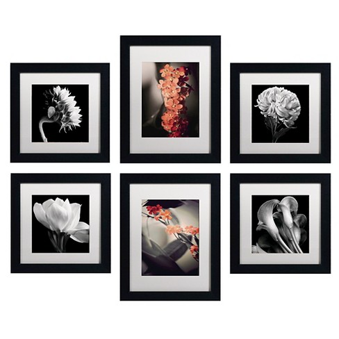 floral gallery wall collection set of 6 ready to hang black framed
