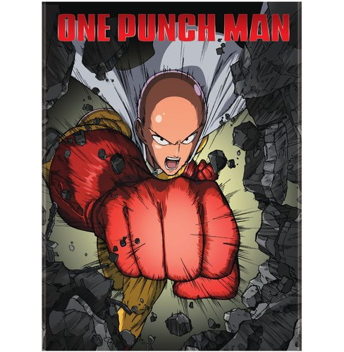 One Punch Man (DVD) - image 1 of 1