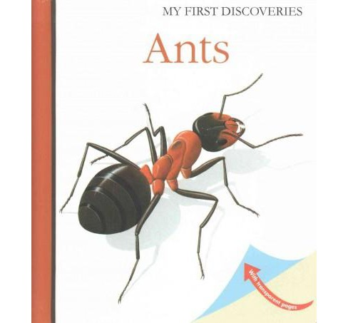 Ants (Hardcover) - image 1 of 1