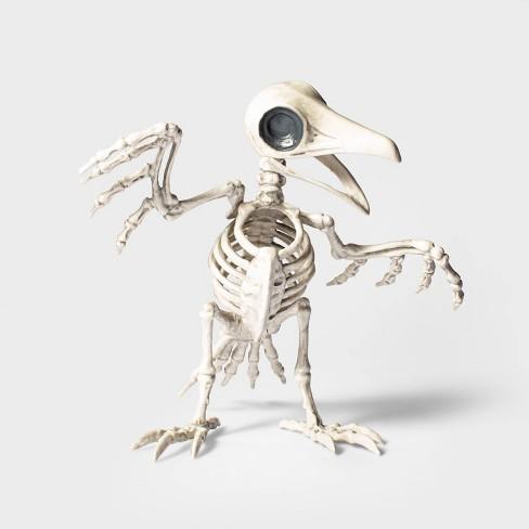 Large Raven Skeleton Halloween Decorative Prop - Hyde & EEK! Boutique™ - image 1 of 1