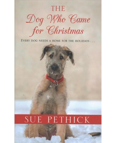Dog Who Came for Christmas -  Large Print by Sue Pethick (Hardcover) - image 1 of 1