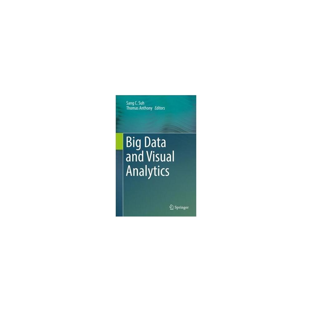 Big Data and Visual Analytics (Hardcover)