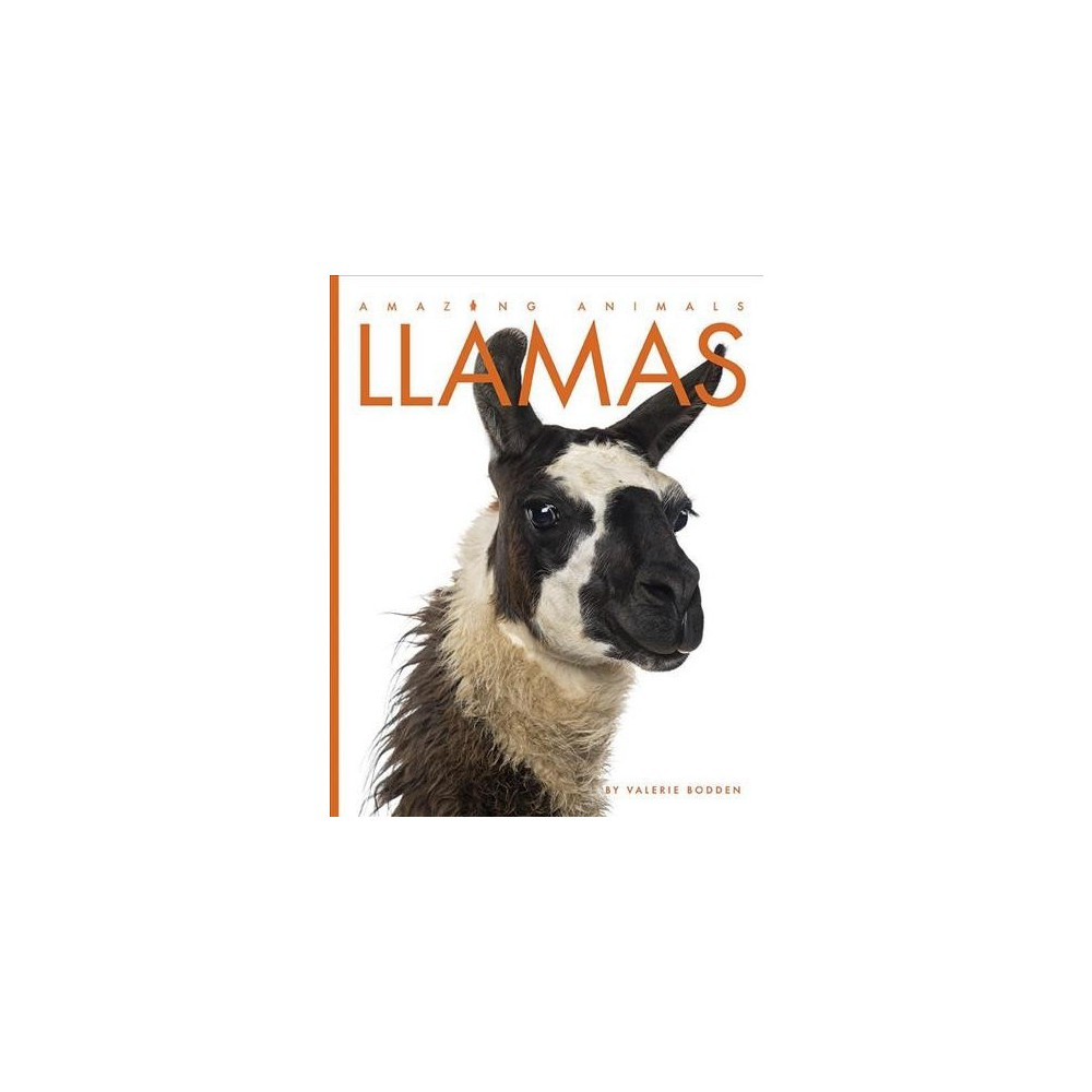 Llamas - Reprint (Amazing Animals) by Valerie Bodden (Paperback)