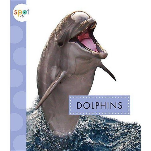 Dolphins - (Spot Ocean Animals) by  Mari C Schuh (Paperback) - image 1 of 1