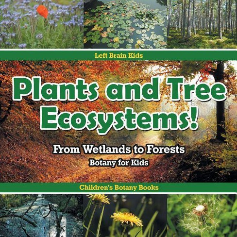 Plants and Tree Ecosystems! from Wetlands to Forests - Botany for Kids - Children's Botany Books - image 1 of 1
