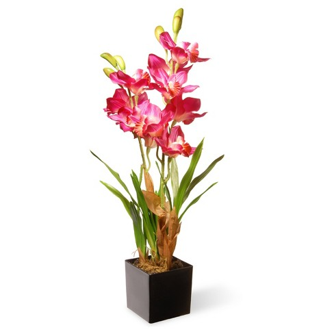25 Purple Pink Orchid Flowers National Tree Company