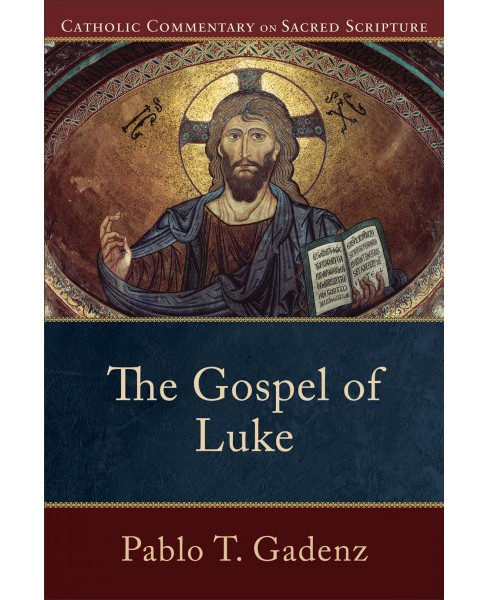 Gospel of Luke -  (Catholic Commentary on Sacred Scripture) by Pablo T. Gadenz (Paperback) - image 1 of 1